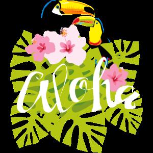 Tukan Toucan Tropic Exotic