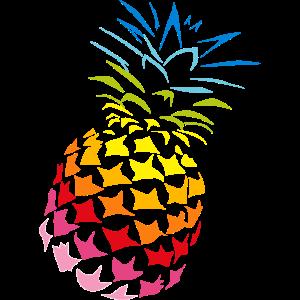 Ananas Regenbogen Farben