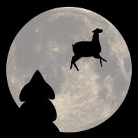 Lama der Außerirdische Poster
