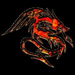 Feuer Drache, fire dragon, digital, rot,