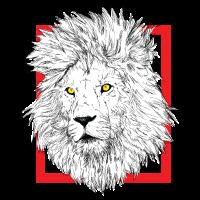 Weiß - Löwe - Wild - Tier - Löwenkopf