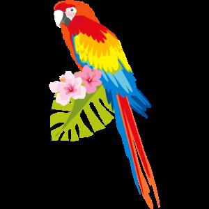 ARA Papagai Regenbogen