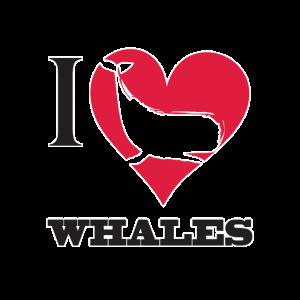 Ich liebe Wale