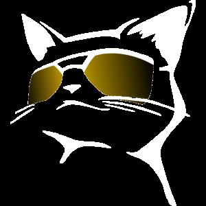 Coole Katze + Sonnenbrille gold - Geschenk Idee