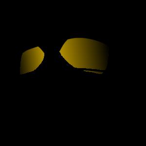 Coole Katze + goldene Sonnenbrille - Geschenk Idee
