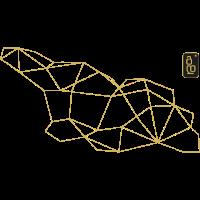 Polygon-Georgia-Muster