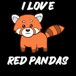 Süßer Katzenbär Roter Panda Red Panda