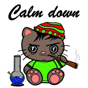 Calm down Katze