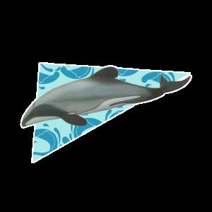 Delfin - Ozean - Säugetier