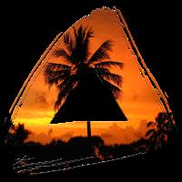 Palme Sommer Neu
