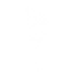 Minz Cocktail