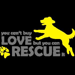 Hund Hunde Rettung - Rescue Dogs - Tierschutz