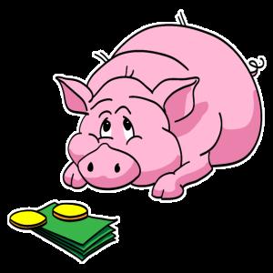Zahlschwein - Paypig
