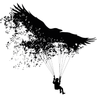 Raven Paraglider