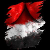 Aegypten Flagge Bodypaint WM EM Fußball Outfit