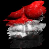 Aegypten Flagge Fahne Zerissen Bodypaint