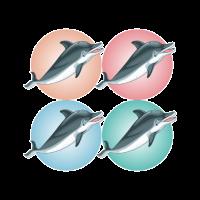Delfine - Ozean