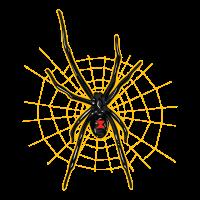 Schwarze Witwe - Spinne
