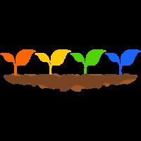 vier Pflanzen in einer Reihe