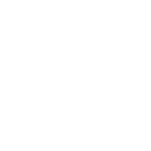 Princess Protection Agency