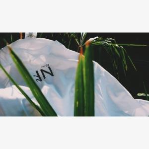 Box Logo NF