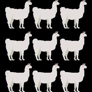 Lama Alpaka