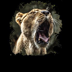 Löwin Löwenkopf