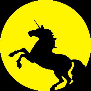 Unicorn Moonlight Shining