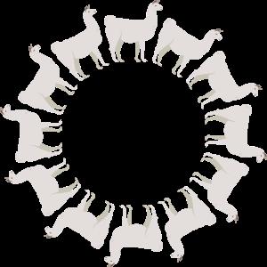 Lama Alpaka im Kreis