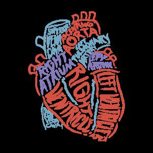 Herz Anatomie Biologie Geschenk Aorta Herzschlag
