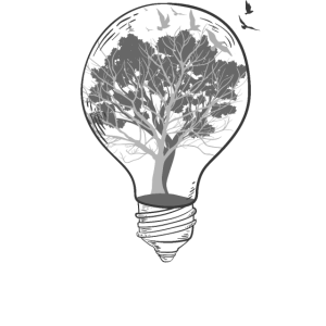Glühbirne Bäume Schwarz Weiß