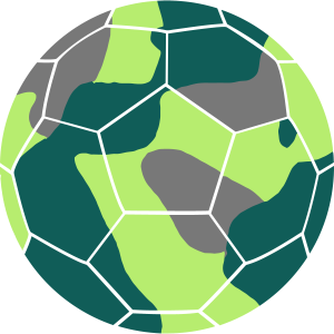 SOCCER BALL IN CAMO / CAMOUFLAGE - GERMANY