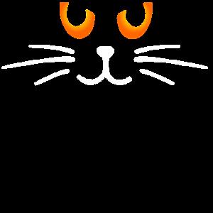Kätzchen auf der Pirsch