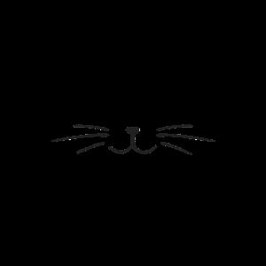 Miau Kätzchen