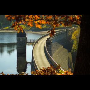 Staudamm im Herbst Poster