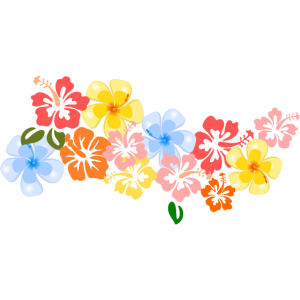 Blumen Hibiskus Blüten tropisch Hawaii Shirt bunt