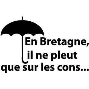 En Bretagne il ne pleut que sur les cons - T-shirt Homme | T shirt fashion  store