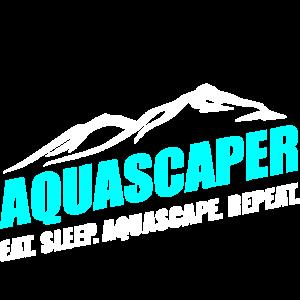 Aquascaping Aquascape Aquarium Geschenk Fische