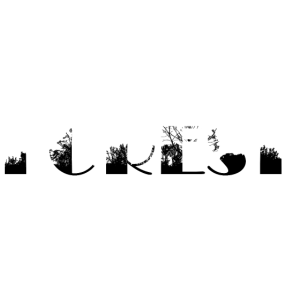 Wald(-silhouette), forest(-silhouette)