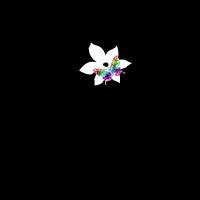 Vogelherz,Blume,Liebe-Geschenkidee
