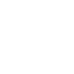 Evolution Unicorn