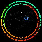 Colored Eye of Horus in Black