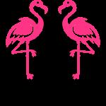 Flamingos Malle Diven Summer Sun Palm Beach 12