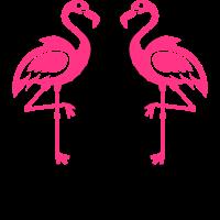Flamingos Malle Diven Summer Mood Palm Beach 12