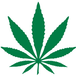 hanfblatt, ganja, marihuana, marijuana, weed