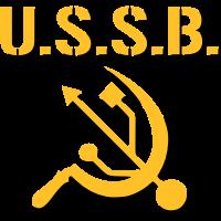UdSSR / USB Computer Parodie