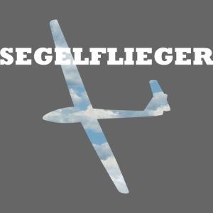 Segelflieger Ls4