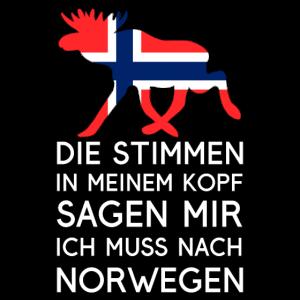 Ich muss nach Norwegen