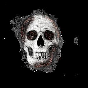 Gothic Halloween Totenkopf T Shirt Design Geschenk
