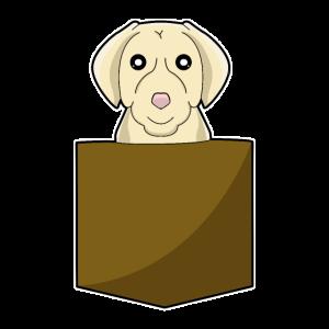 Pocket Animal Hund